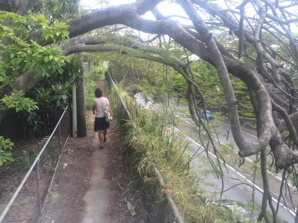 Sidewalk in the Brisbane suburbs