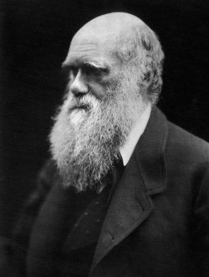 1280px-Charles_Darwin_photograph_by_Julia_Margaret_Cameron,_1868